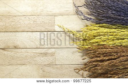 Three color of paddy rice on wood background