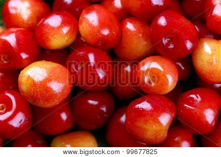 Sweet cherries, close-up