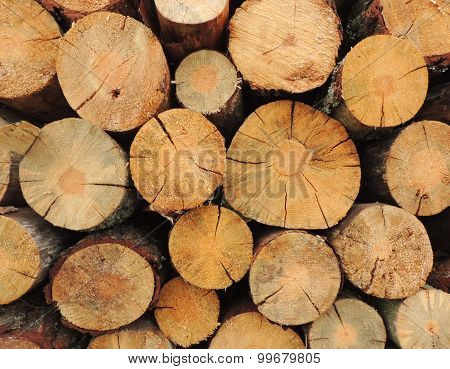 Stack of logs.