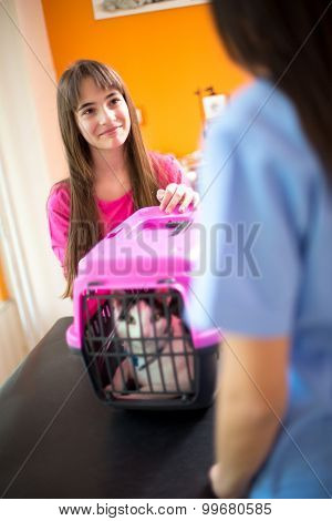 Cute little girl brought her sick cat for checkup in vet clinic
