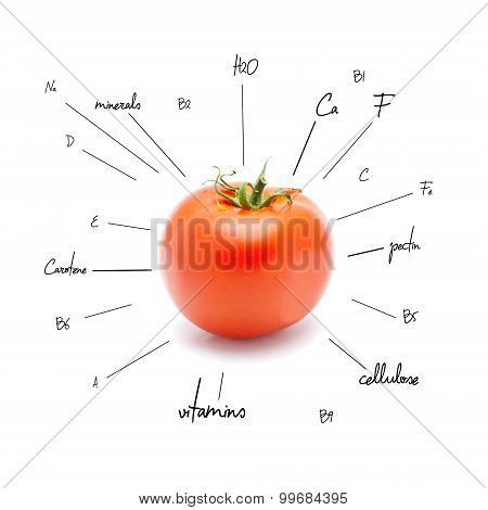 The chemical composition of tomato