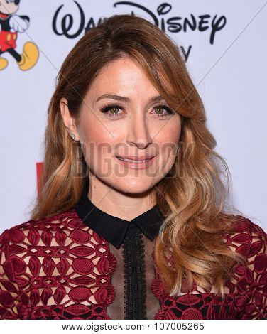 LOS ANGELES - OCT 23:  Sasha Alexander arrives to the GLSEN Awards 2015 on October 23, 2015 in Hollywood, CA.