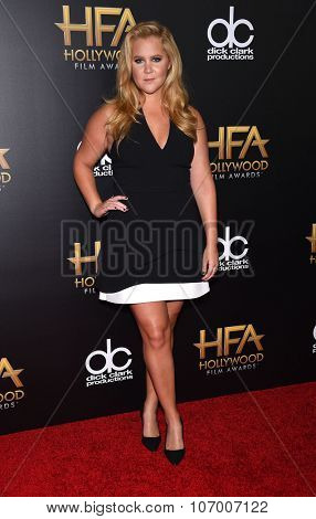 LOS ANGELES - NOV 1:  Amy Schumer arrives to the Hollywood Film Awards 2015 on November 1, 2015 in Hollywood, CA.