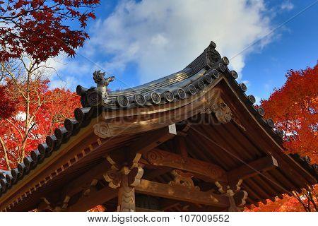 Fall Season Of Jojakukoji Temple