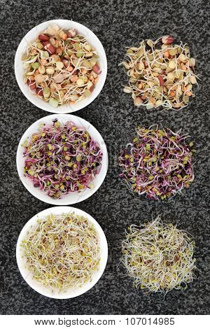 Sprouting seed and bean selection in porcelain bowls and loose on marble background.