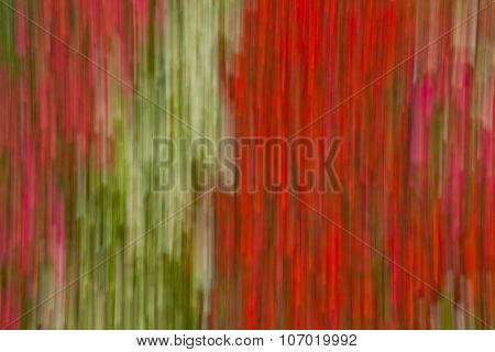Abstract spring colors