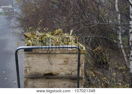 Trolley With Autumn Leaves