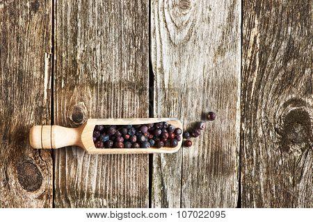 Wooden scoop with dried juniper berries over rustic background