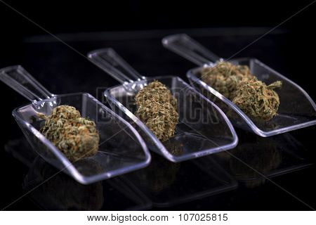 Marijuana buds on scoppers isolated over black background
