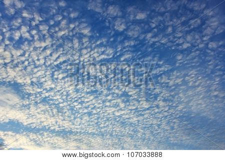 Altocumulus Clouds On Whole Sky