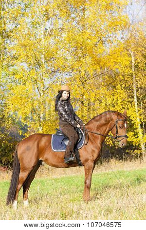 equestrian on horseback in autumnal nature