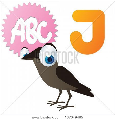 vector cartoon funny animals alphabet: J is for Jackdaw
