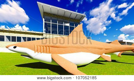 Shark lying on the ground in front of building