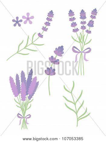 lavender flat vector set