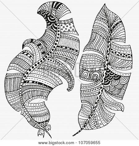 Vector set of feathers on a white background. Vintage, tribal, artistically drawn, stylized, feather