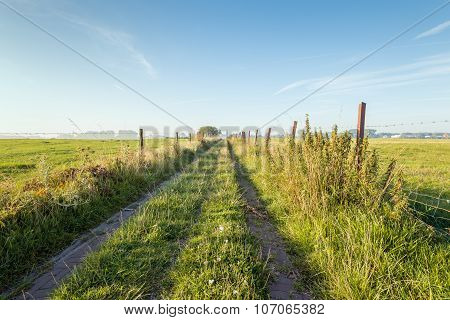 Narrow Path Between Two Fields