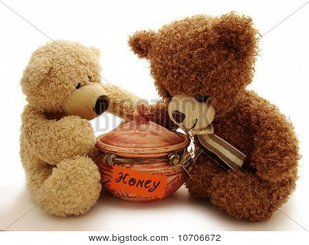 teddy bears & honey