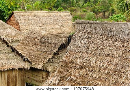 Thatched Roofs Of Traditional Houses In Amazonas
