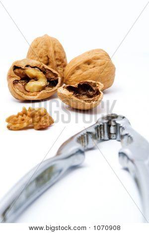 Walnuts And Nut Cracker