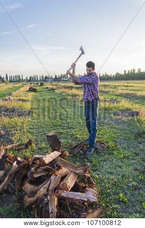 Woodcutter At Work