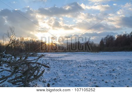 Snowy Winter Danube Backwater Landscape At Sunset