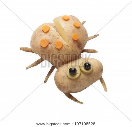 Ladybird Made Of Potatoes