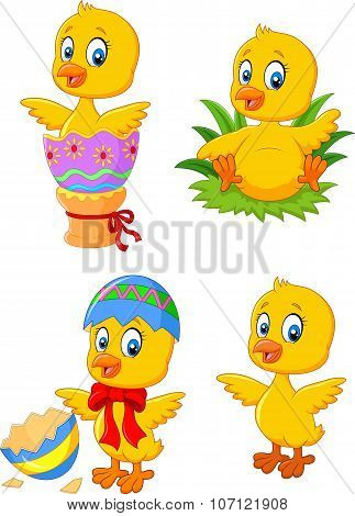 Cute funny baby chicken with Easter egg collection set