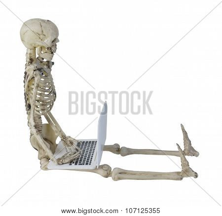 Skeleton Using Laptop