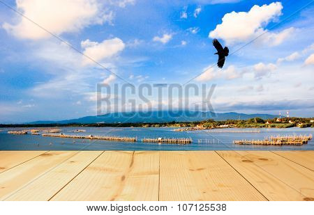The Bird Flying On Bule Sky With Light Yellow Color Wood Terrace Texture Background