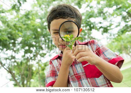 Little Botanist