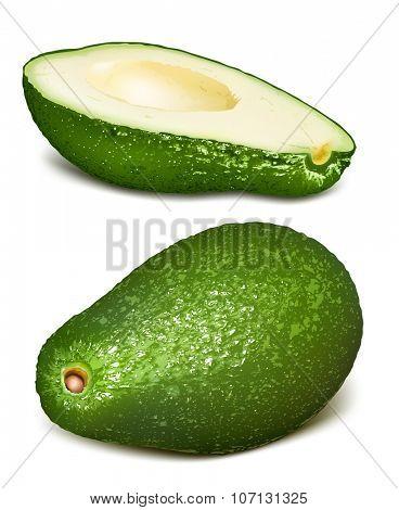 Avocados. Vector illustration