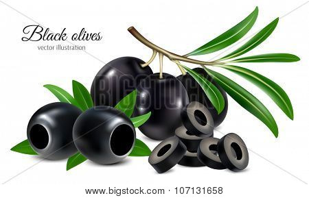 Black olives on a twig with leaves, pitted olives and olives slices. Vector illustration.