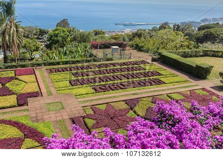 FUNCHAL, MADEIRA - JULY 19, 2015: Botanical Gardens Madeira on July 19, 2015 in Madeira, Portugal.