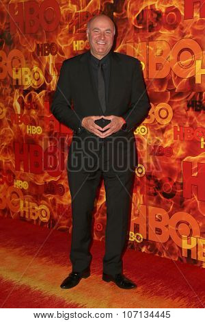 LOS ANGELES - SEP 20:  Kevin O'Leary at the HBO Primetime Emmy Awards After-Party at the Pacific Design Center on September 20, 2015 in West Hollywood, CA
