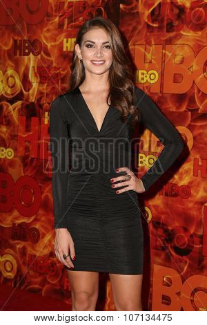 LOS ANGELES - SEP 20:  Hollie Shay at the HBO Primetime Emmy Awards After-Party at the Pacific Design Center on September 20, 2015 in West Hollywood, CA