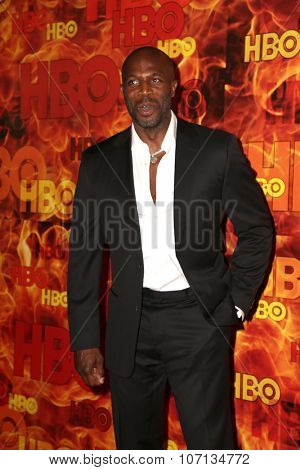 LOS ANGELES - SEP 20:  Billy Brown at the HBO Primetime Emmy Awards After-Party at the Pacific Design Center on September 20, 2015 in West Hollywood, CA