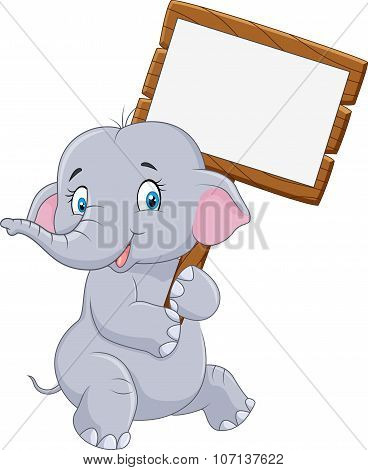 Cartoon funny elephant holding blank sign
