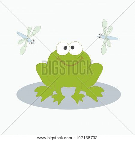 Green Frog And Dragonfly