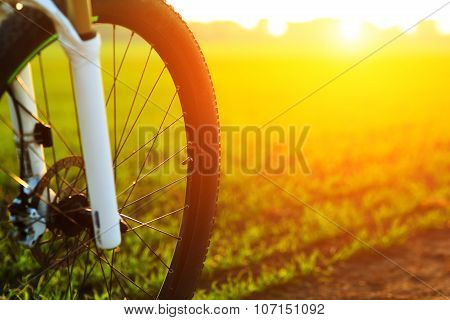 Mountain bicycle at sunny day