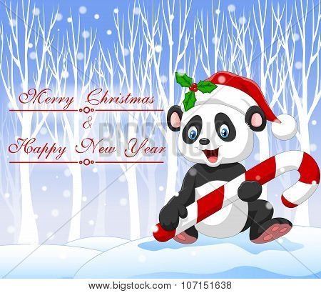 Cartoon funny panda bear holding Christmas candy with winter background