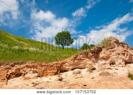 Landscape with tree and sandstone