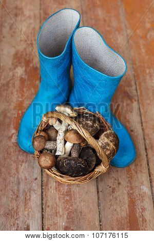 Blue rubber boots and a basket full of mushrooms on a wooden background
