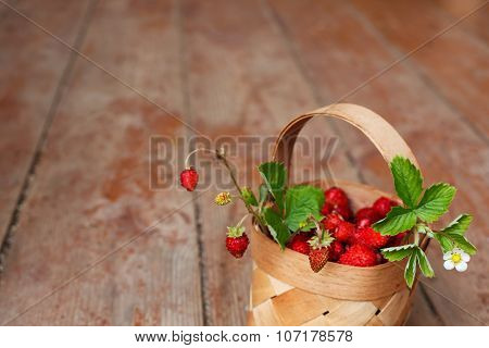 Autumn Harvest In The Village: Juicy Berries