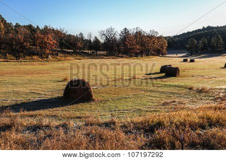 golden hayfield in sunrise fall