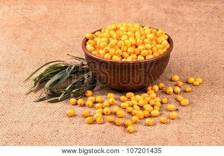 Buckthorn Berries In Bowl