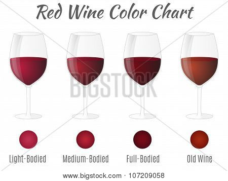 Red Wine Color Chart. Hand Drawn Wine Glasses. Vector Concept.