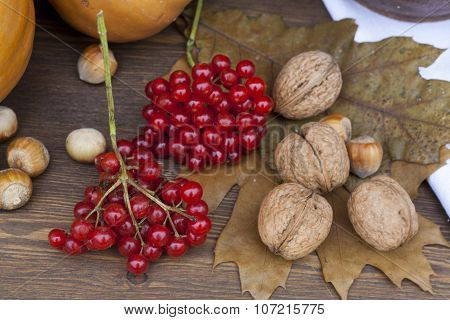 A bunch of red viburnum on an old wooden background