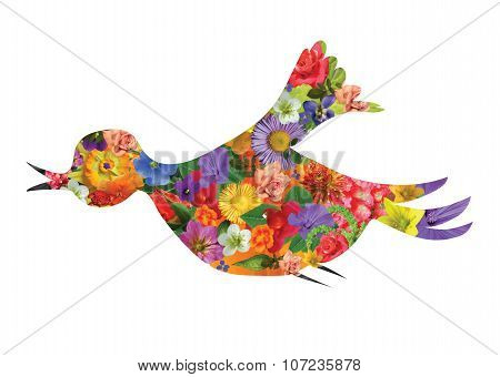 Spring Flower bird photo collage