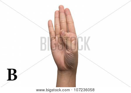 Finger Spelling the Alphabet in American Sign Language (ASL). Letter B
