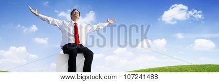 Successful Businessman Relaxing in an Open Field